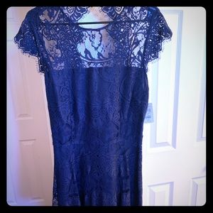 NWT Navy Lace Dress